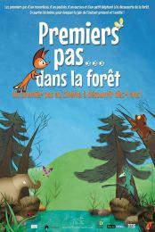 premiers-pas-dans-la-forêt-Whippet19