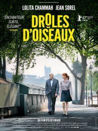 droles-doiseaux-shellac17