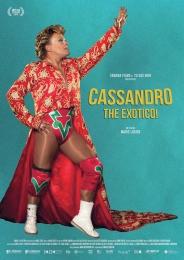 cassandro the exotico-urban18